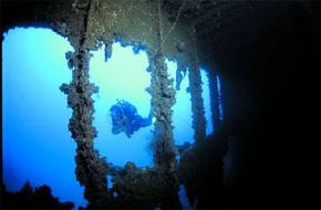 divingtheme11